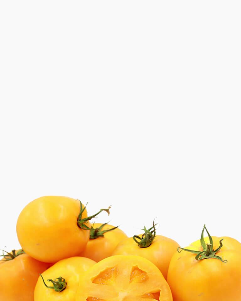 Inserbo srl - Pomodori gialli